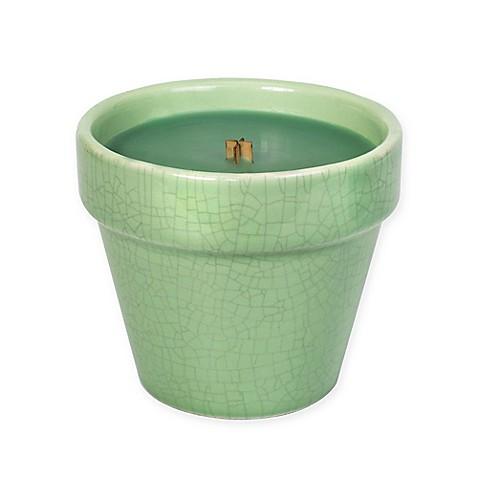 Woodwick Greenhouse Windowsill Herbs Garden Pot Ceramic