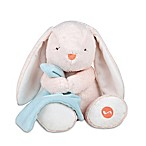 carter's® Cuddly Lullaby Soother Bunny Plush