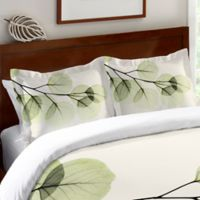 Laural Home® Eucalyptus X-Ray Standard Pillow Sham in Green/Ivory