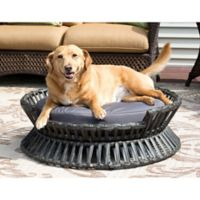 Iconic Pet Small Rattan Raised Arc Bed in Brown/Grey