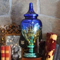 Tracy Porter® Mercury Glass Ginger Jar in Blue/Teal