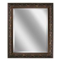 Ornate Framed 28.5-Inch x 34.5-Inch Wall Mirror in Bronze