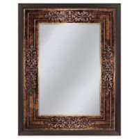 Genoa 27-Inch x 33-Inch Mirror in Bronze