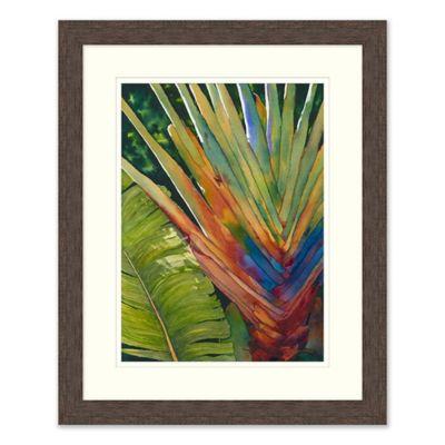 Tropical Fauna 1 Wall Art