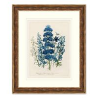 Blue Florals 1 Framed Botanical Print Wall Art