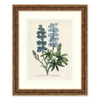 Blue Florals 2 Framed Botanical Print Wall Art