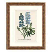 Blue Florals 2 Framed Botanical Print Wall Art