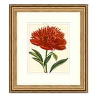 Red Floral 1 Framed Wall Art