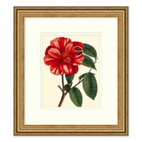 Red Floral 2 Framed Wall Art