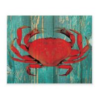 Astra Art 16-Inch x 20-Inch Persimmon Crab on Teal Plank Canvas Wall Art