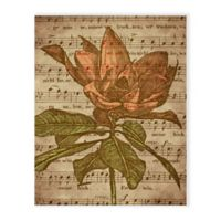 Astra Art 16-Inch x 20-Inch Musical Magnolia Canvas Wall Art in Brown