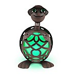 Solar Lighted Metal Turtle in Brown/Green