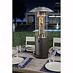Bond 10,000 BTU Propane Heater in Antique Bronze Finish