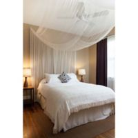 Cirrus Galaxie 4-Poster Bed Canopy in Ivory