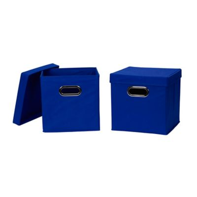 Household Essentials® Collapsible Fabric Storage Bins With Lids In Blue  (Set Of 2)