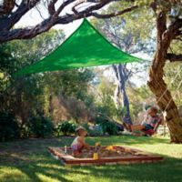 Coolaroo® 9-Foot 10-Inch Party Sail in Green