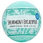 Fizz & Bubble 6.5 oz. Artisan Bath Fizzy in Spearmint Eucalyptus
