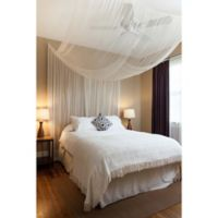 Cirrus 4-Poster Bed Canopy in Ivory