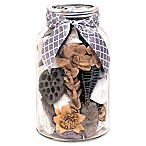 Lumiere Botanical Amber Sand and Sky Potpourri Mason Jar