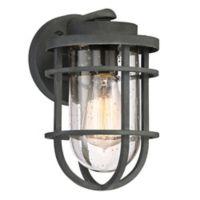 Quoizel Boardwalk 1-Light Outdoor Wall Lantern in Mottled Black