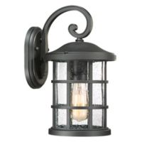 Quoizel Crusade Medium Wall Lantern in Black
