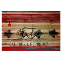 Parvez Taj California Republic 45-Inch x 30-Inch Pinewood Wall Art