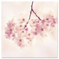 "Marmont Hill ""Cherry Blossoms"" 32-Inch x 32-Inch Canvas Wall Art"