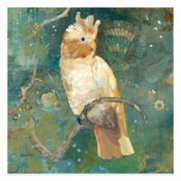Marmont Hill Cockatoo Perched II 18-Inch x 18-Inch Canvas Wall Art