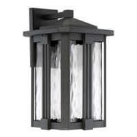 Quoizel Everglade Large Outdoor Wall Lantern in Earth Black