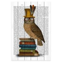 Marmont Hill Owl and Books 12-Inch x 18-Inch Pinewood Wall Art