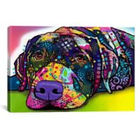 Savvy Labrador 60-Inch x 40-Inch Canvas Wall Art
