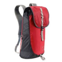 Lewis N. Clark® Electrolight™ RFID-Protected Day Backpack in Red/Charcoal