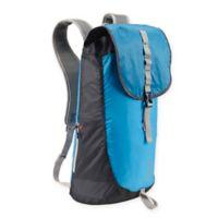 Lewis N. Clark® Electrolight™ RFID-Protected Day Backpack in Blue/Grey