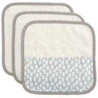 Elegant Baby 3-Piece Organic Washcloth Set in Grey Dot Print