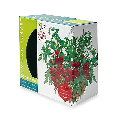 Hanging Tomato Basket Kit By Buzzy
