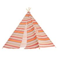 Indoor/Outdoor Kids Teepee
