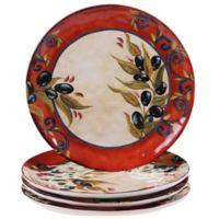 Certified International Umbria Dinner Plates (Set of 4)