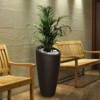 Mayne Modesto 32-Inch Tall Planter in Espresso