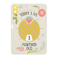 Milestone™ Baby Ages Turn Wheel Photo Card