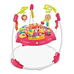 Fisher-Price® Pink Petals Jumperoo™