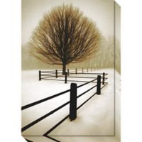 Solitude Photographic Canvas Wall Art