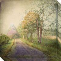 Sweet Road Canvas Wall Art