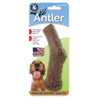 Large Peanut-Butter-Flavored Nylon Antler Pet Chew Toy in Brown