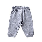 Celebrity Kids Size 6M French Terry Pant in Grey