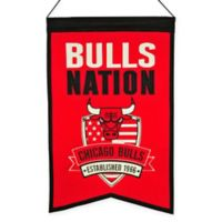 NBA Chicago Bulls Nation Banner