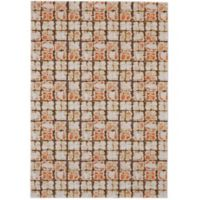 Feizy Cerys Sorbet 2-Foot 2-Inch x 4-Foot Accent Rug in Orange