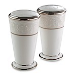 Noritake® Silver Palace Salt and Pepper Shakers