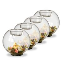 National Tree Company Duckling Glass Candleholders (Set of 4)