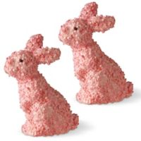 National Tree Company 11-Inch Bunny Pair in Pink (Set of 2)