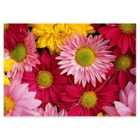 The Softer Side by Weather Guard™ 46-Inch x 66-Inch Big Bloom Kitchen Mat
